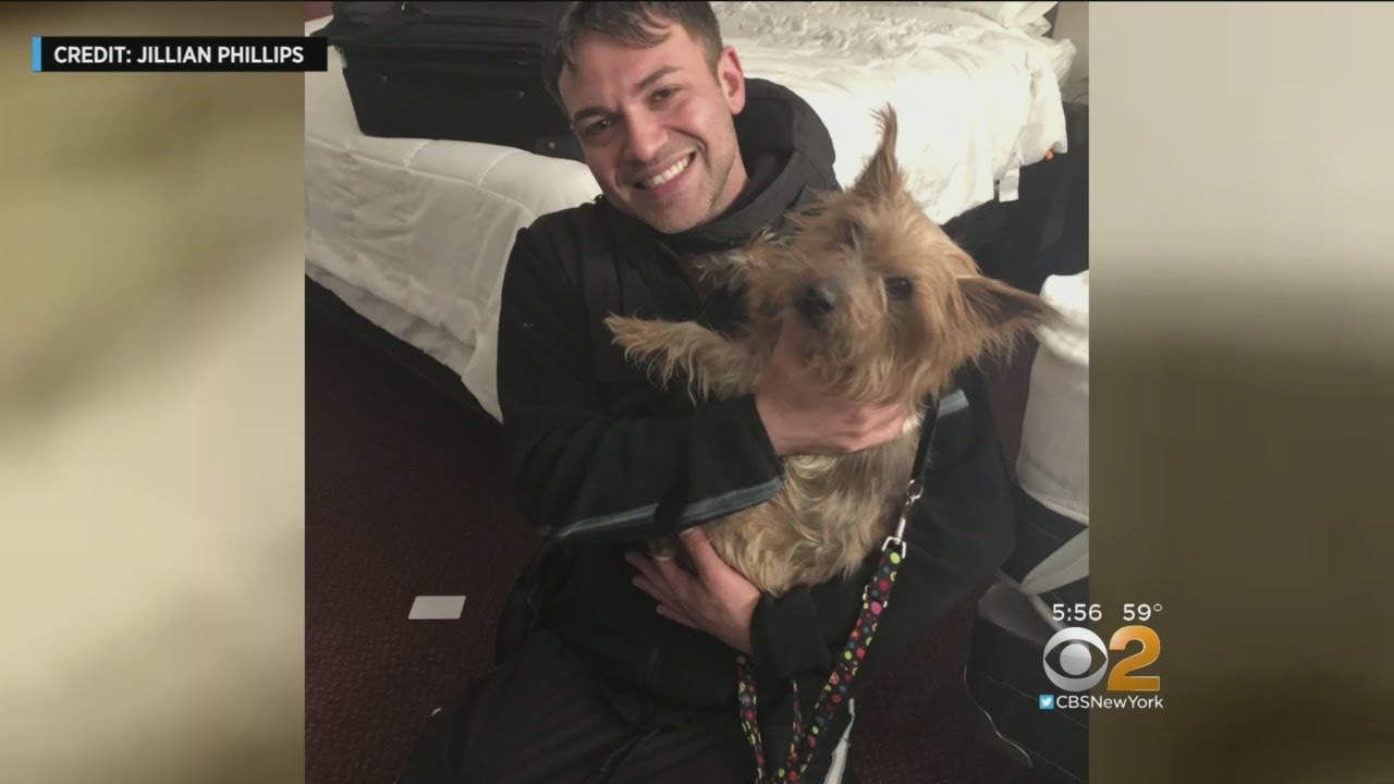 Happy Reunion For NJ Dog Owner