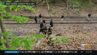 Missing Woman Rescued After Hiker Finds Her In New Jersey