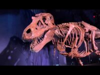 SUE: The T. rex Experience at Liberty Science Center