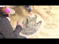 Dino Dig with Jack Horner at Liberty Science Center
