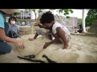 Dino Dig Adventure – Now at Liberty Science Center!
